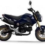 Honda MSX 125: quelque chose des Golden Sixties