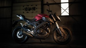 2014-Yamaha-MT125-EU-Anodized-Red-Static-005