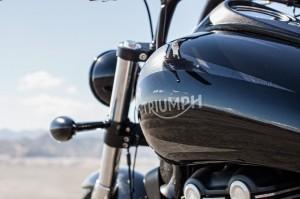 Triumph - Thunderbird Night Storm - 1010 (3)