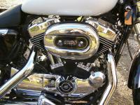 le-moteur-de-la-sportster-1200