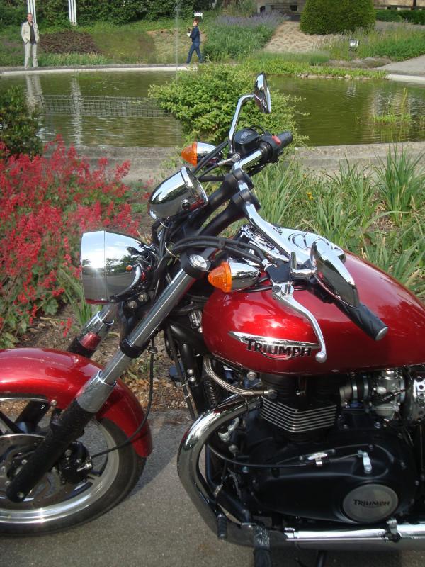 triumph-speedmaster-2011