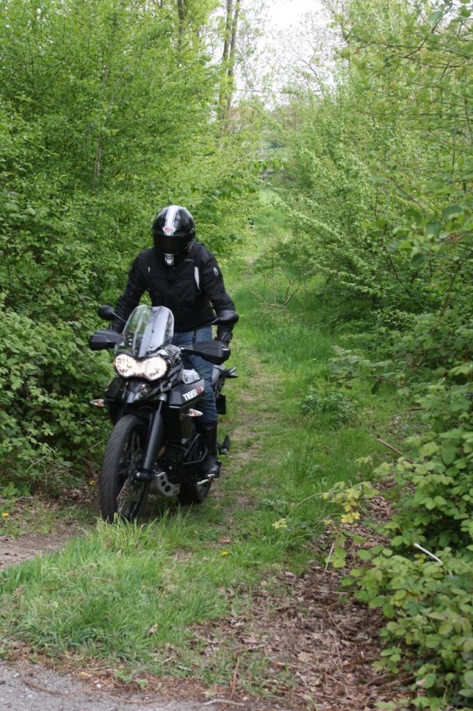 Off Road,my dear...