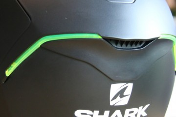 shark_skwal_zoom4