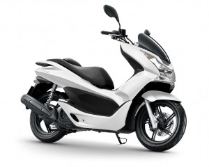 PCX «Hiver» by IP Store
